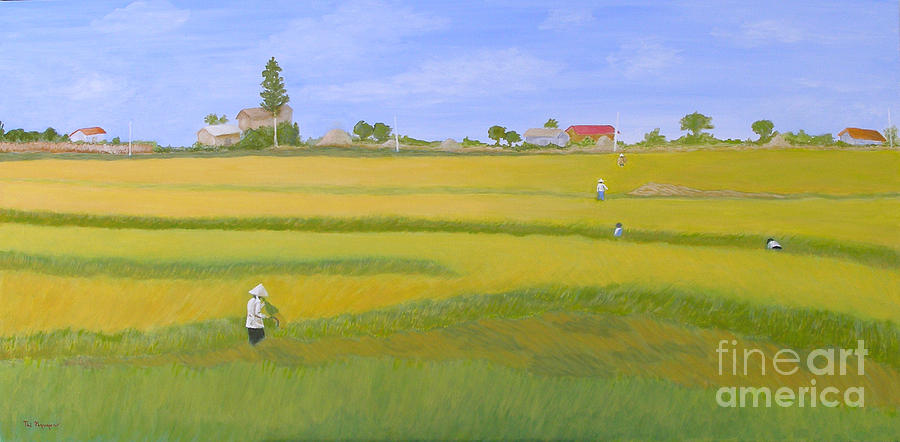 Scenic Painting - Rice Field In Northern Vietnam by Thi Nguyen