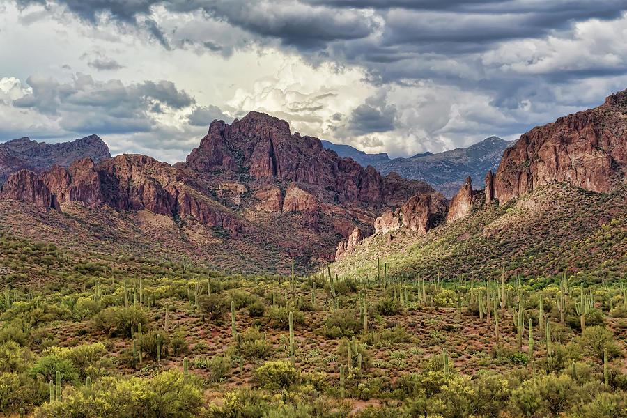 Desert Photograph - Rich In Depth by Ryan Seek