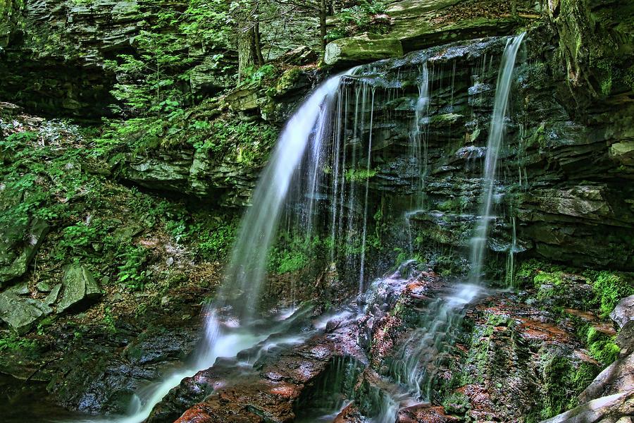 Ricketts Glen S P - B. Reynolds Falls Photograph