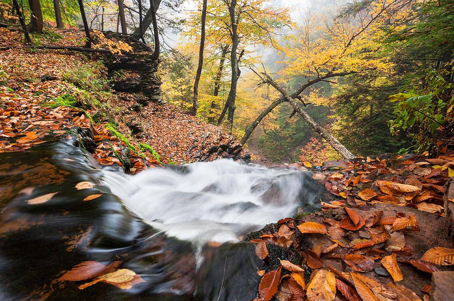 Pennsylvania Photograph - Ricketts Glen State Park Ganoga Falls Allegheny Mountains Pennsylvania by Mark VanDyke