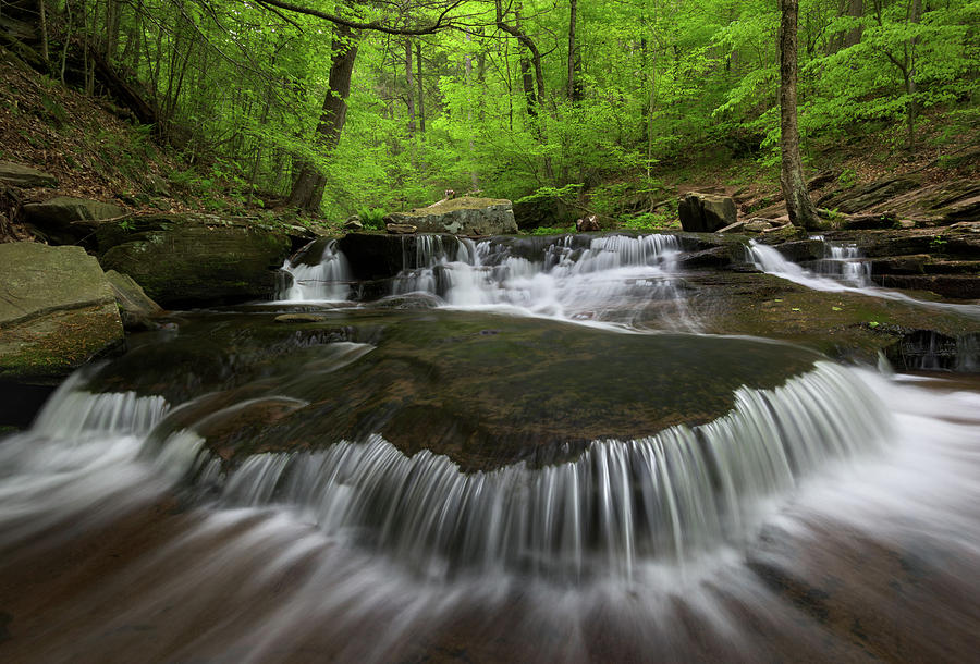Cascade Photograph - Ricketts Glen State Park Pennsylvania by Mark VanDyke