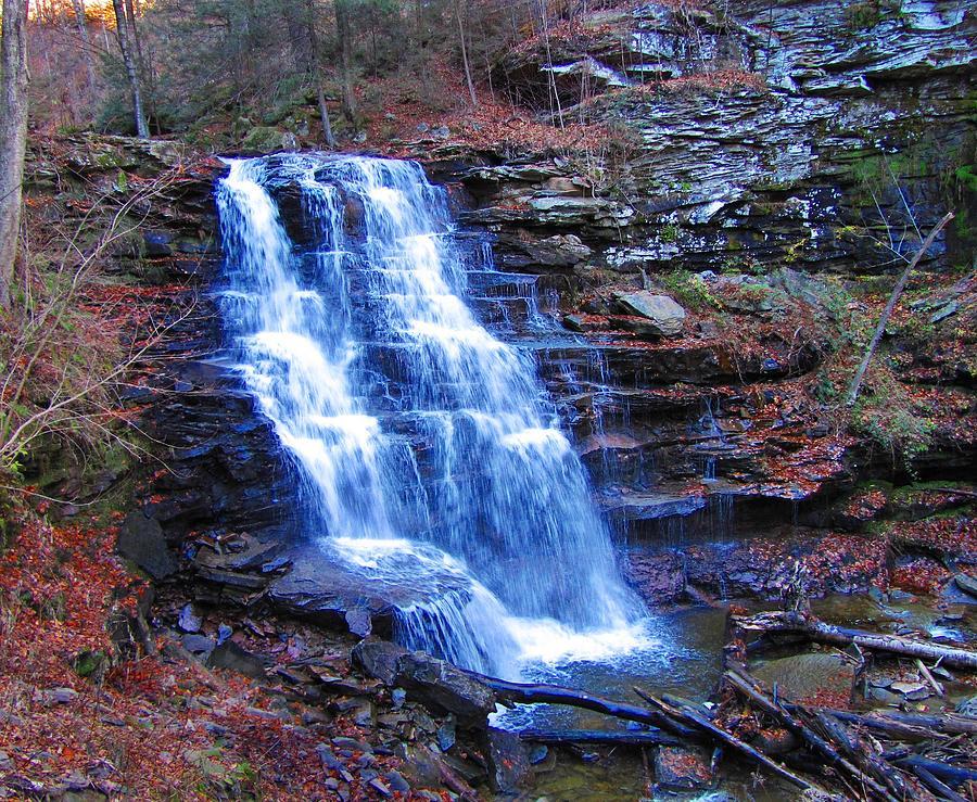Ricketts Glen Waterfall 3941  Photograph by David Dehner