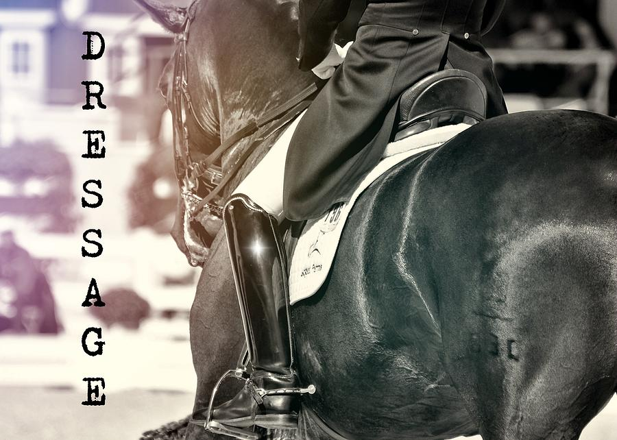 Horse Photograph - Ride The Rhythm Quote by JAMART Photography