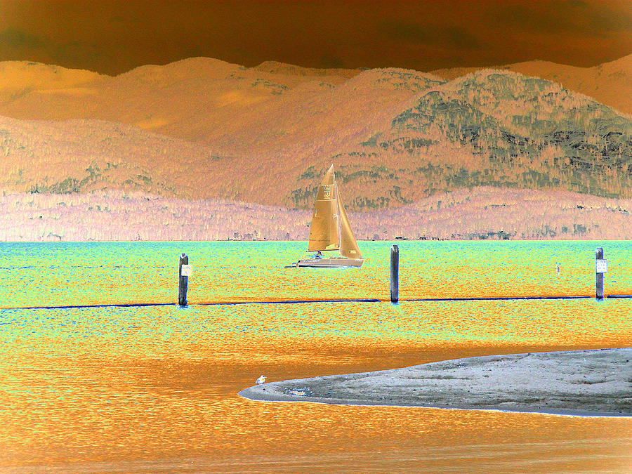 Sail Boat Digital Art - Ride The Wind by Peter  McIntosh