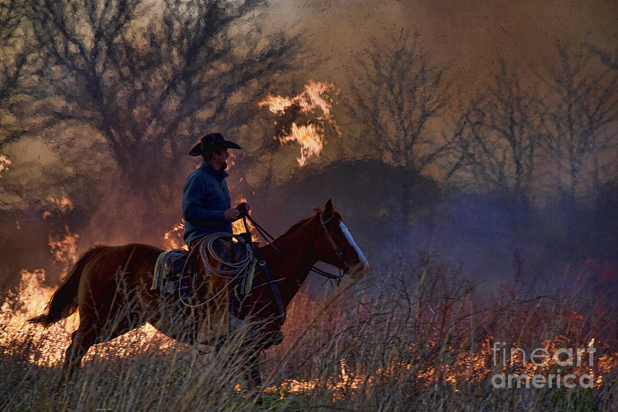 Ridin' the Flames by Crystal Nederman