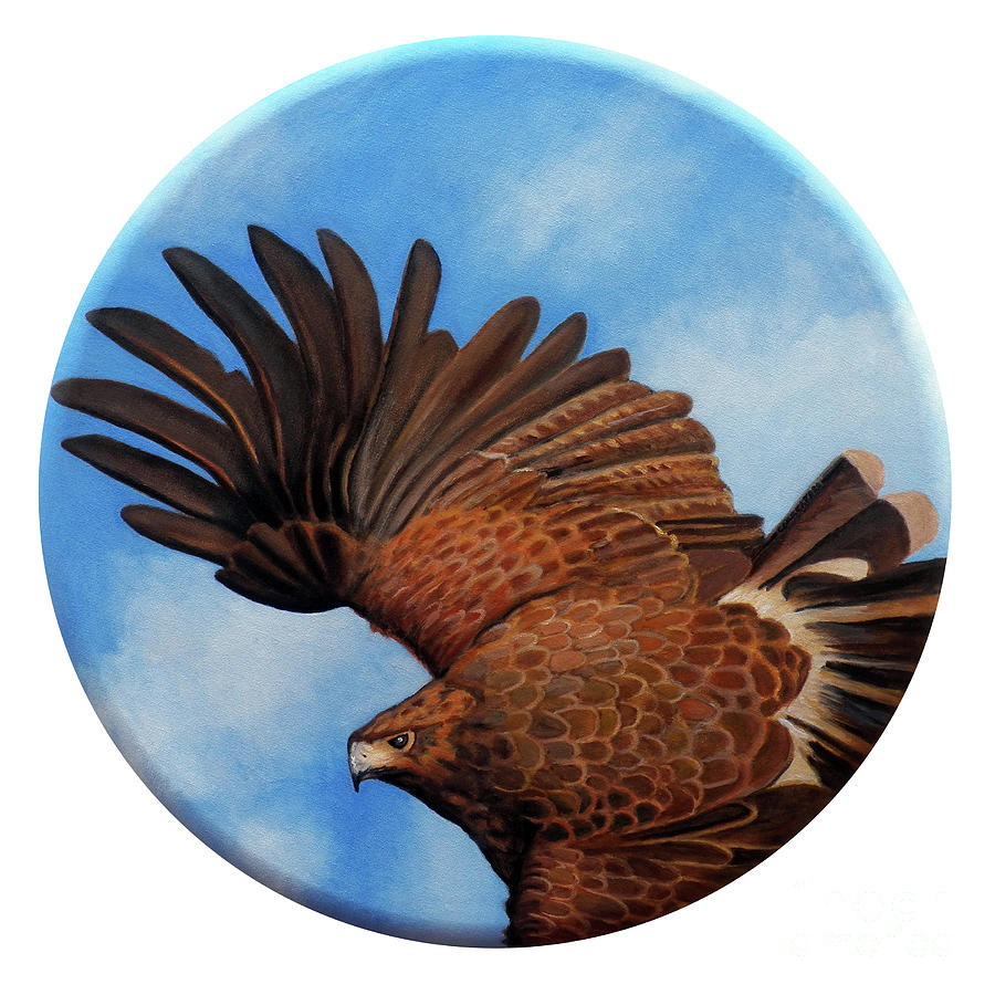 Hawk Painting - Riding The Wind by Brian  Commerford