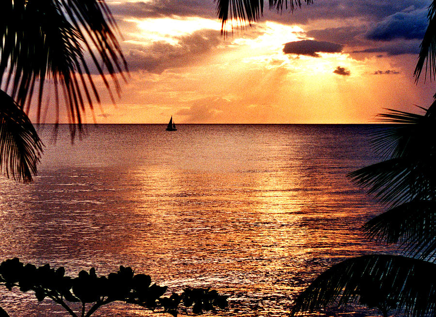 Rincon Photograph - Rincon Sunset by Michael  Cryer