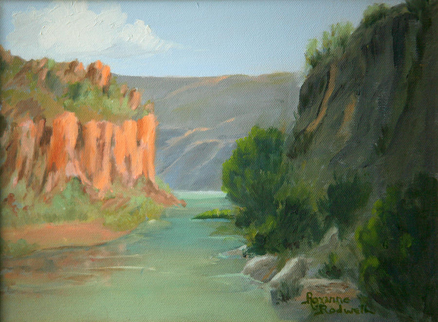 Landscape Painting - Rio Grande Canyon by Roxanne Rodwell