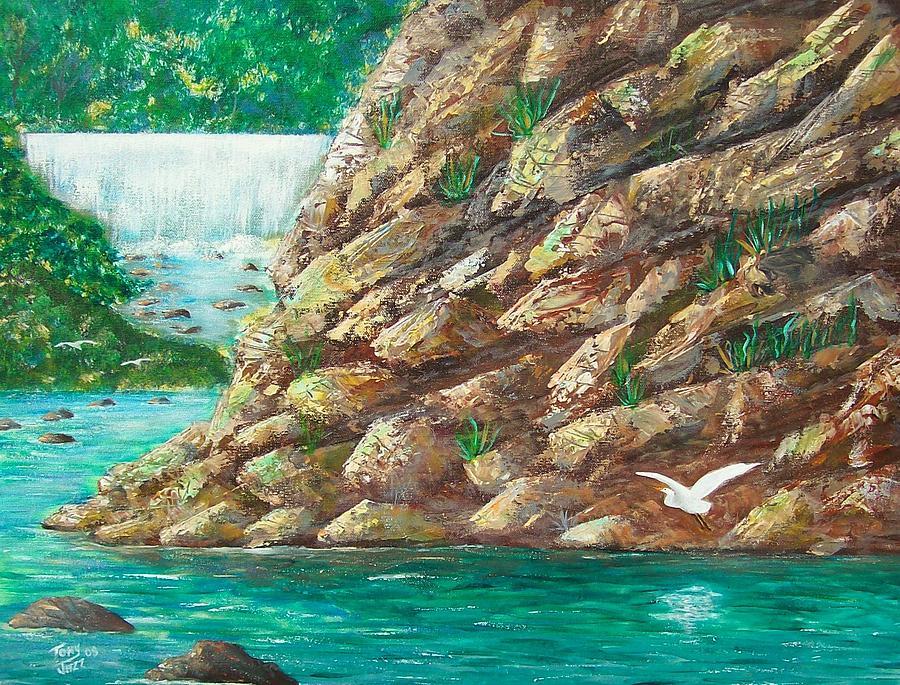 River Painting - Rio La Plata by Tony Rodriguez
