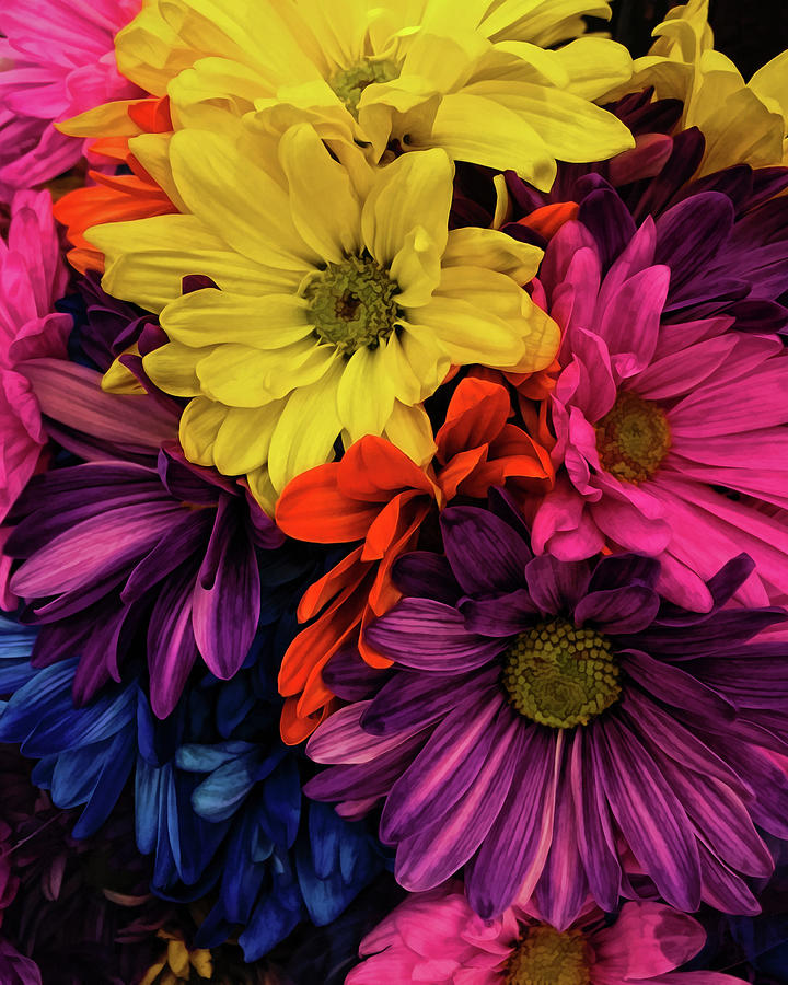 Flowers Photograph - Riot Of Color by Jessica Manelis