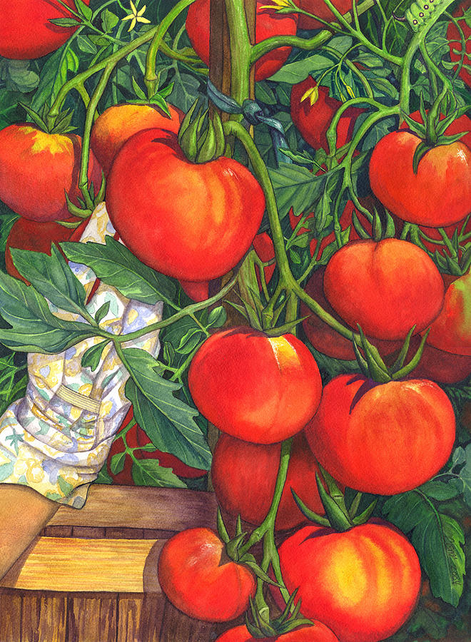 Tomato Painting - Ripe by Catherine G McElroy