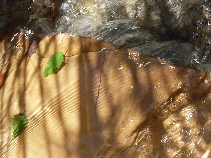 Stream Photograph - Ripples And Shadows by Warren Thompson