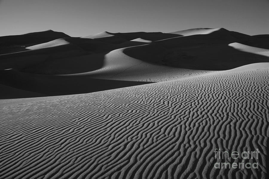 Ripples in the Sand by Timothy Johnson
