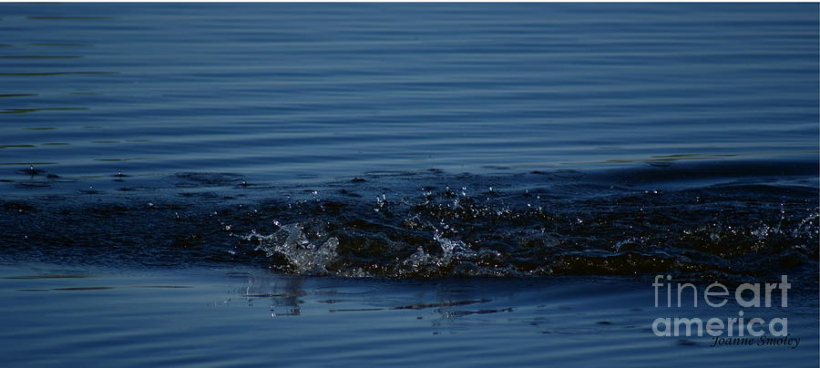 Blue Photograph - Ripples by Joanne Smoley