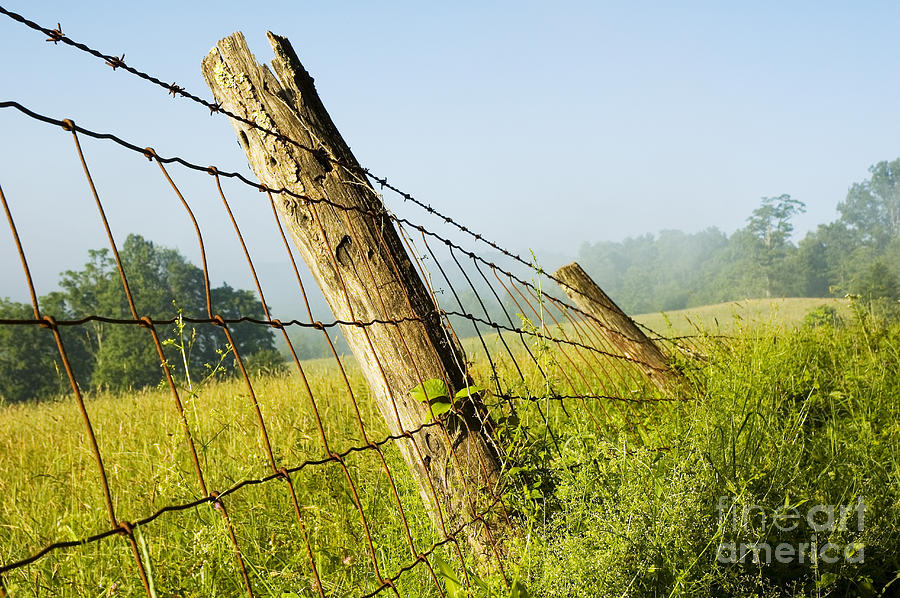 Misty Morning Photograph - Rising Mist With Falling Fence by Thomas R Fletcher