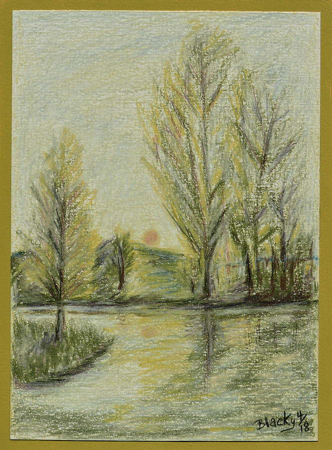 Rising on Country Pond Drawing by Donna Blackhall
