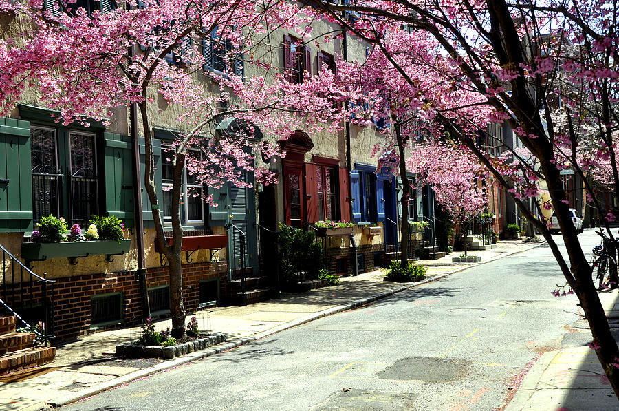 Rittenhouse Square Photograph - Rittenhouse Square Neighborhood by Andrew Dinh