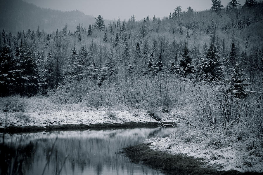 Scenic Photograph - River Bend Winter by Todd Bissonette