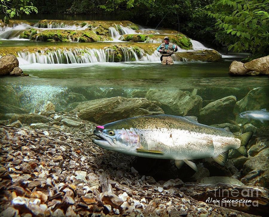 Trout Painting - River Chrome by Alex Suescun