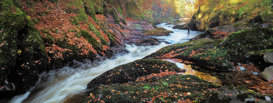 River Esk Rapids by Dave Bowman