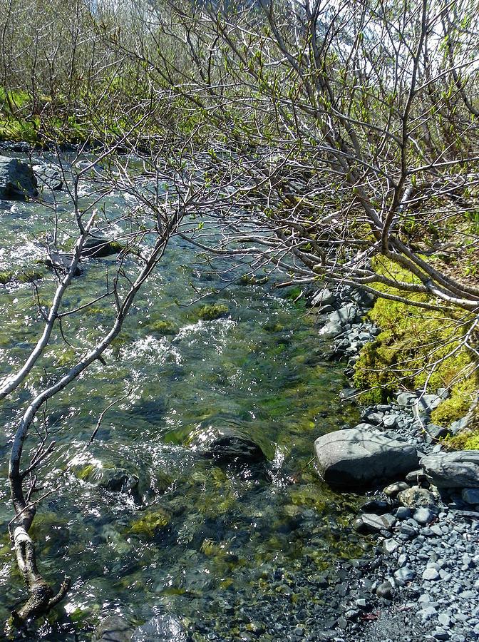 Bridge Photograph - River Flowing by Crewdson Photography