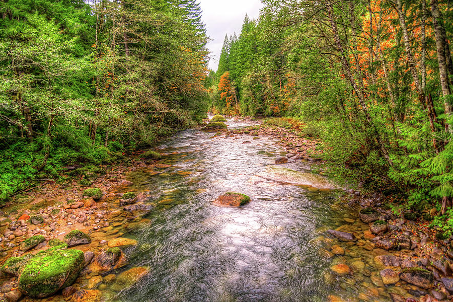 River Of Color Photograph