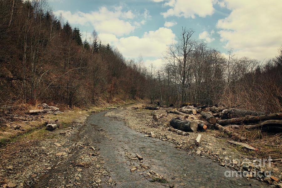 Mountains Photograph - River On The Road by Mykola Romanovsky
