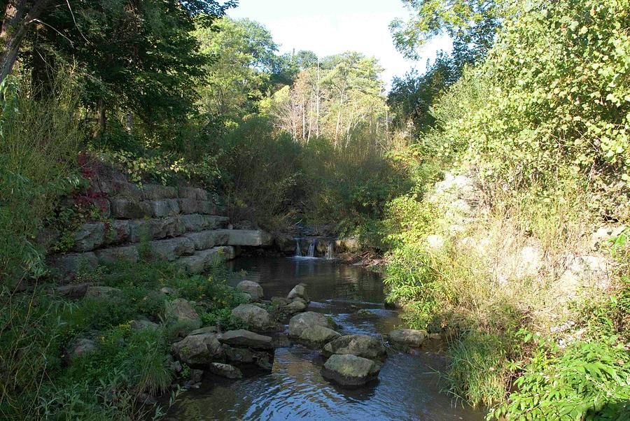 River Pond Photograph