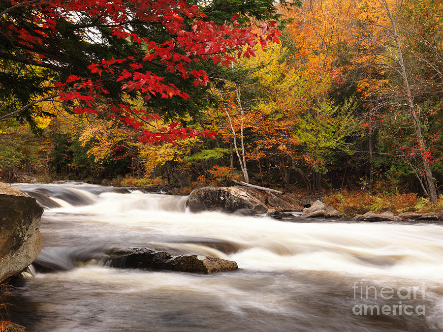 River Photograph - River Rapids Fall Nature Scenery by Oleksiy Maksymenko