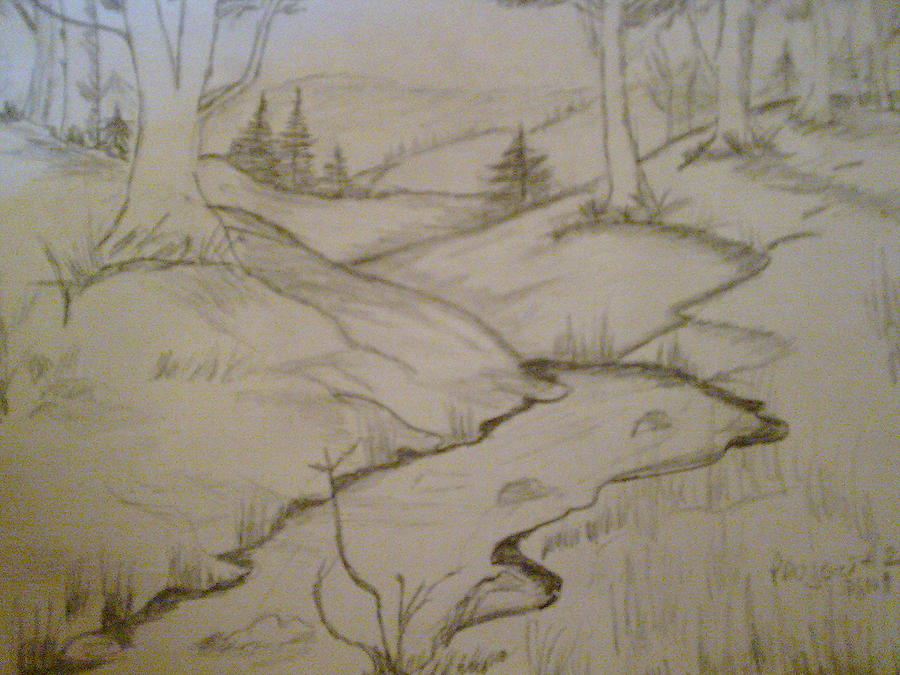 Rivers Runs Through Woodedarea Drawing - River Runs  by Helen Vanterpool
