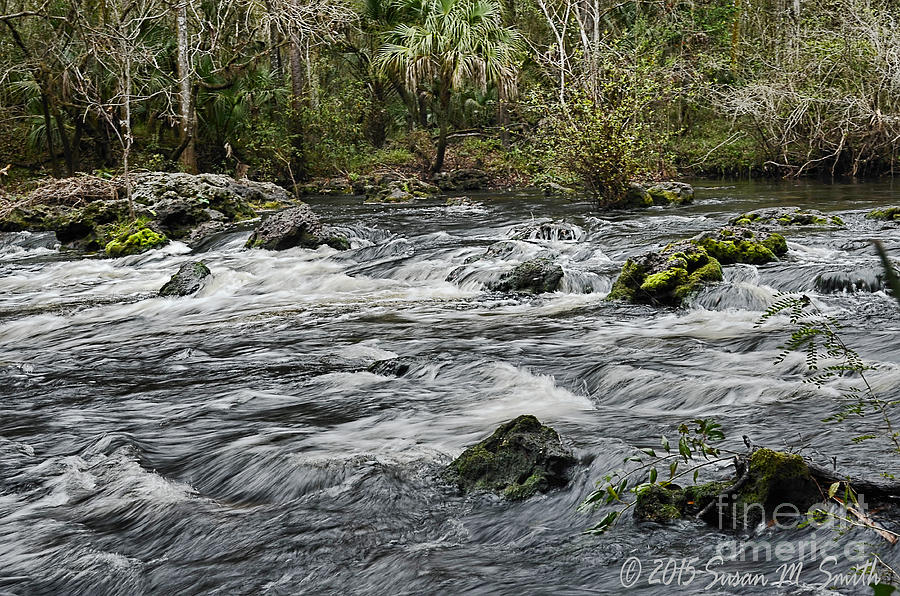 River Rush by Susan Smith