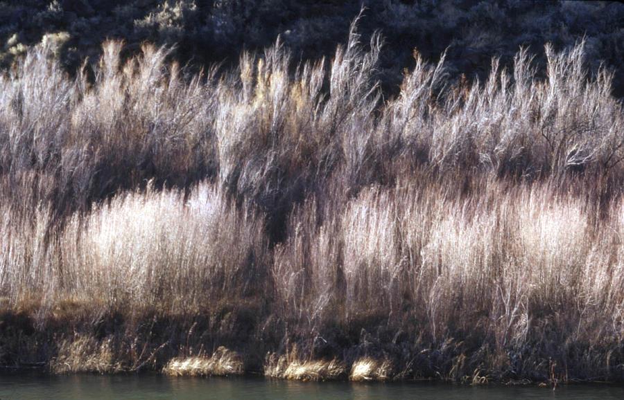 Landscape Photograph - River Sage by Lynard Stroud