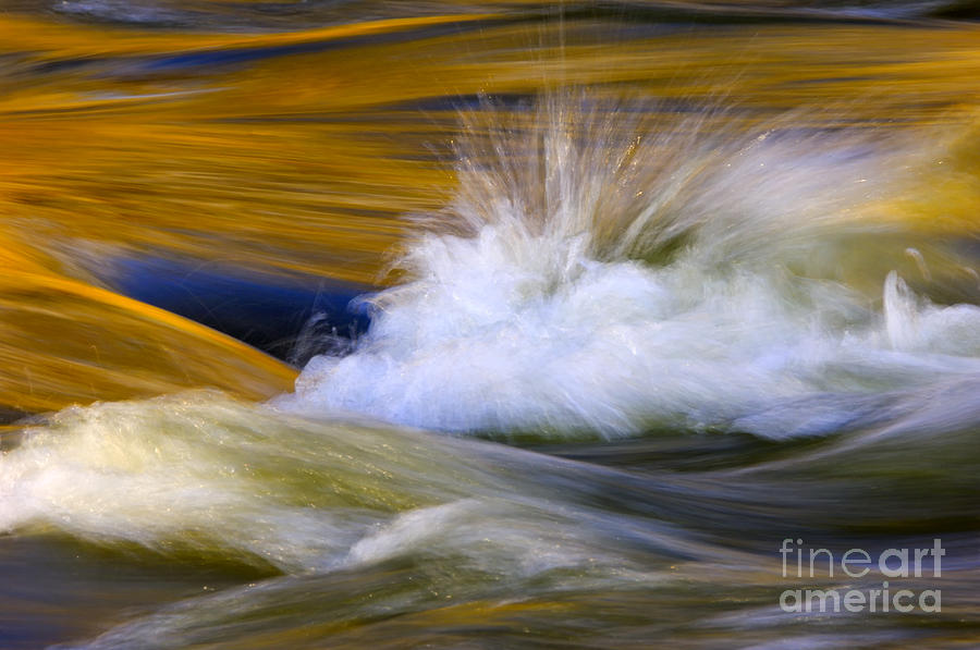 River Photograph - River by Silke Magino