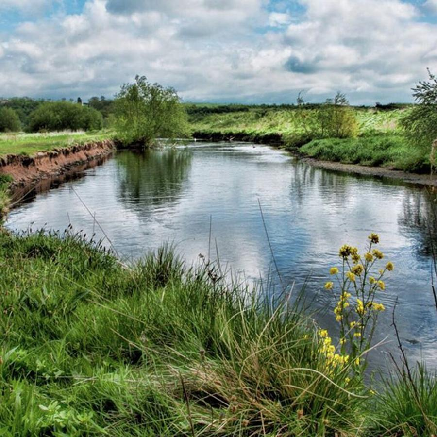 Nature Photograph - River Tame, Rspb Middleton, North by John Edwards