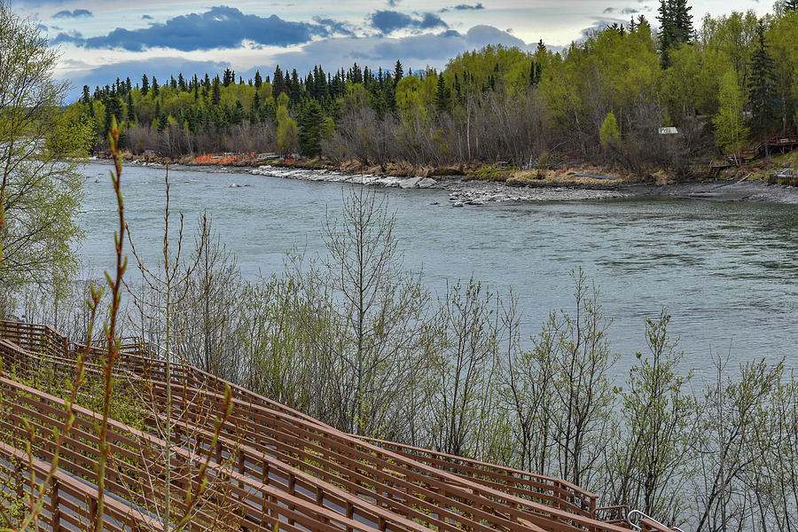 Kenai River Photograph - River, trees and Mountains by Crewdson Photography