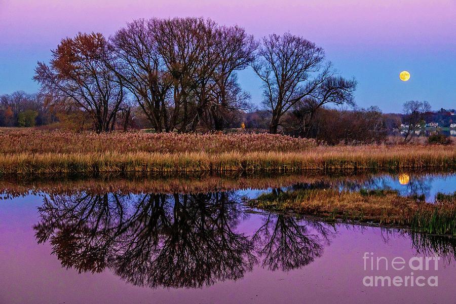 Riverglow by Neil Shapiro