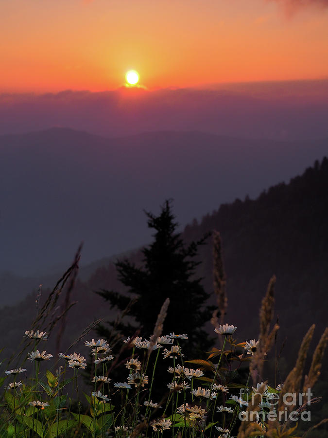 Blue Ridge Parkway Photograph - Rize And Shine. by Itai Minovitz