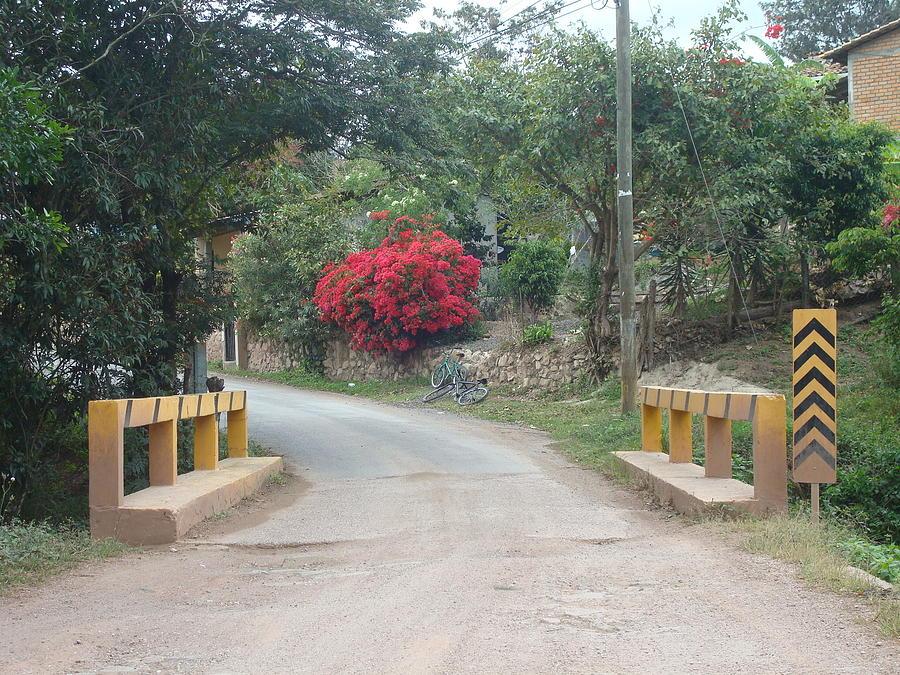 road 1 by Carlos Paredes