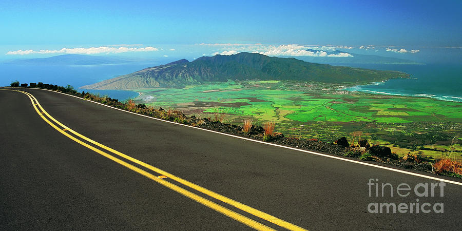 Road Above Maui  by Frank Wicker