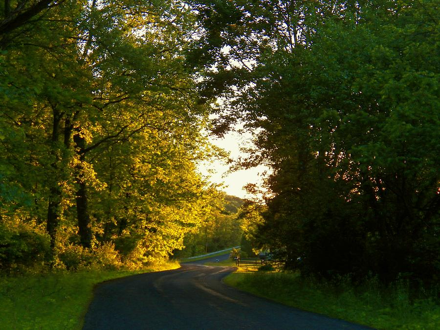 Virginia Photograph - Road At Sunset by Joyce Kimble Smith