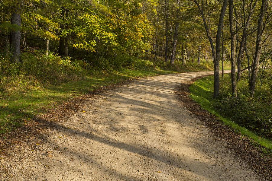 Road Photograph - Road In Woods Autumn 3 A by John Brueske