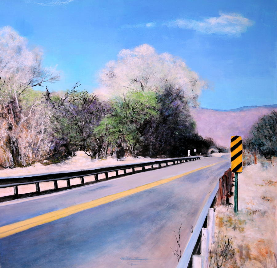 Road Over The Wash Painting by M Diane Bonaparte
