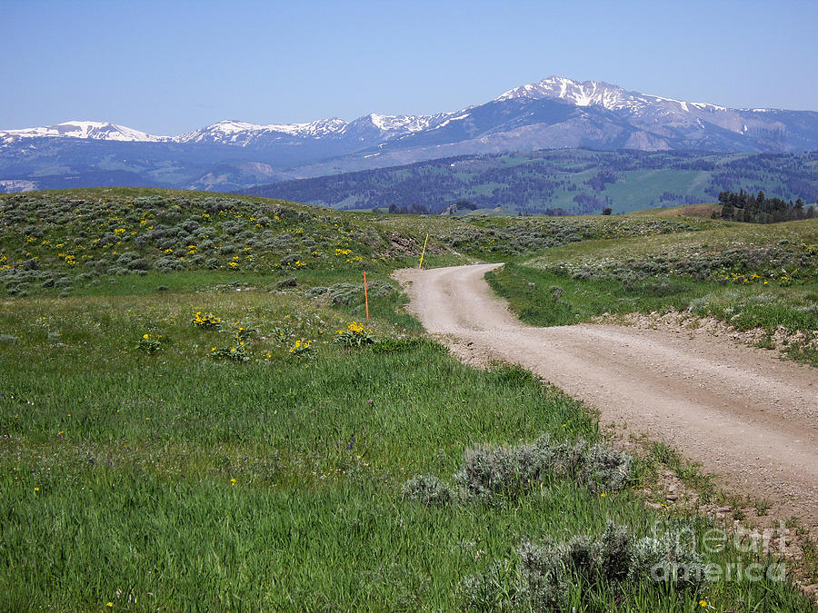 Road to Big Sandy in Wyoming by Barb Dalton