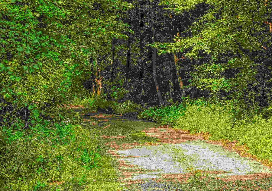 Path Photograph - Road To Heaven by Michael Degenhardt