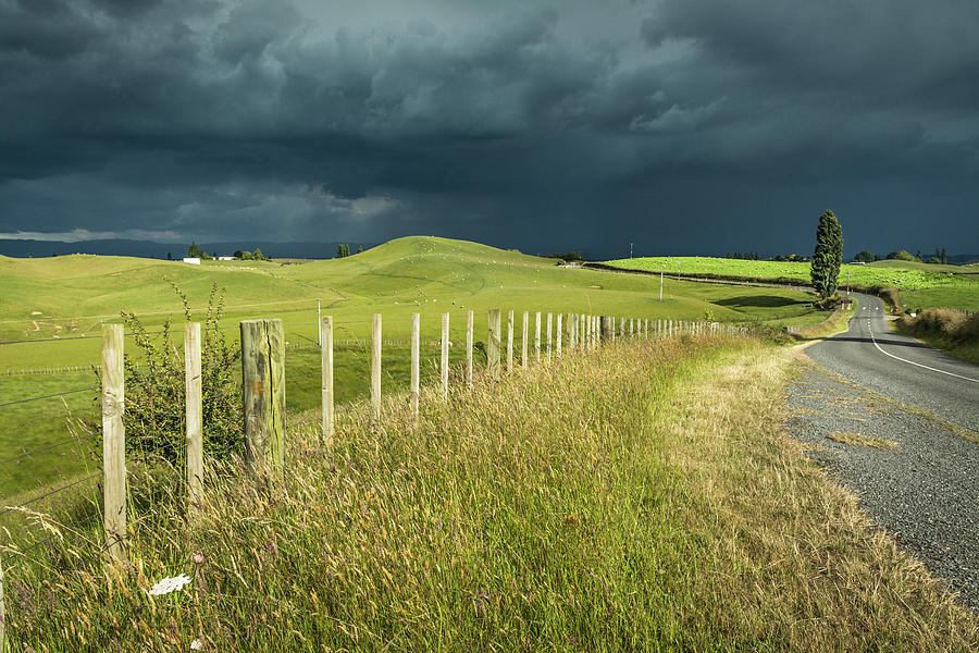 Matamata Countryside by Racheal Christian