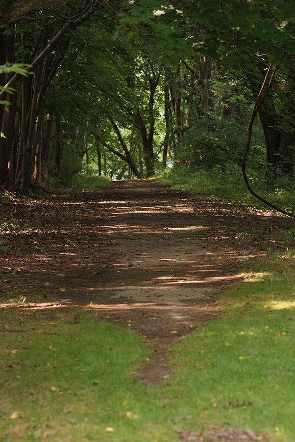 Nature Photograph - Road To Nowhere by Heather Green