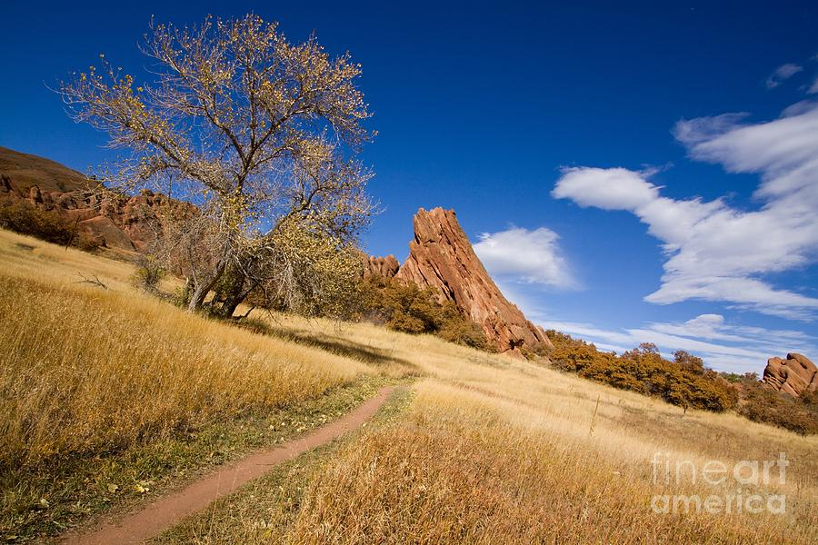 Landscape Photograph - Road To The Rocky Blue by Andrew Serff