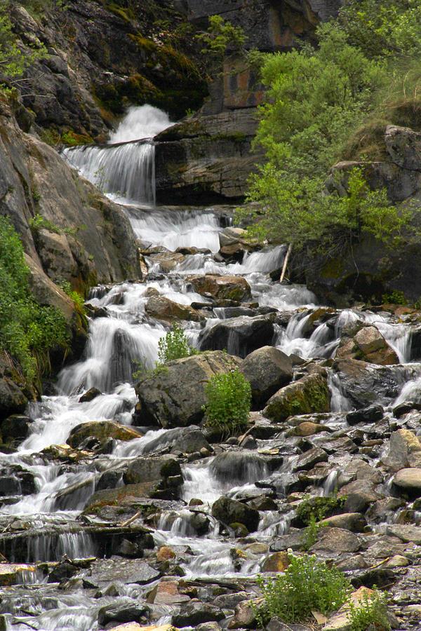 Colorado Photograph - Roadside Mountain Stream by Mike McGlothlen