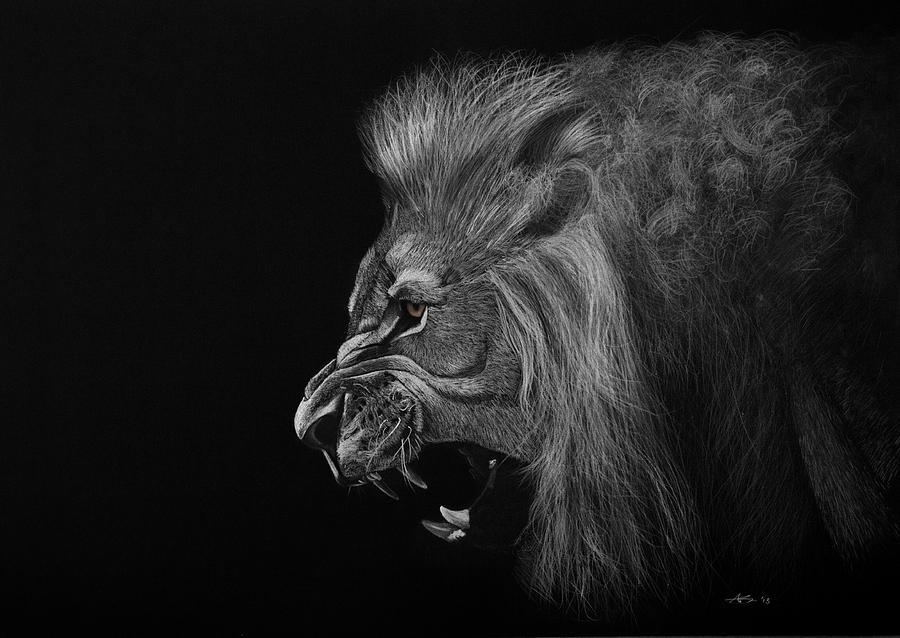 Lion Drawing - Roar by Robert Bateman
