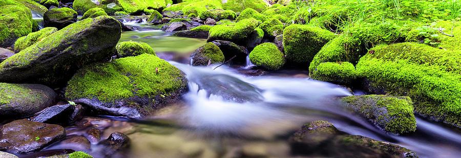 Roaring Fork Photograph - Roaring Fork Serenity by Stephen Stookey